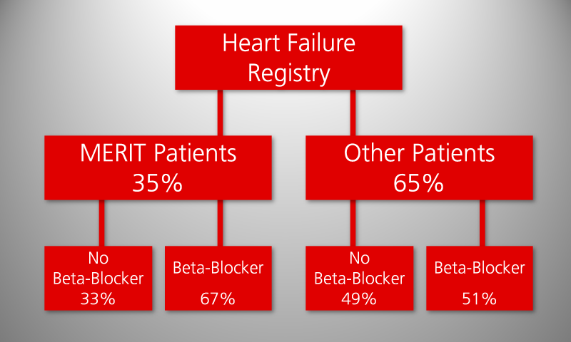 Comparison of MERIT patients to other patients of the myocardial infaction registry: Study population and therapy